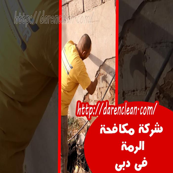 شركة مكافحة الرمة في دبي_مكافحة النما الابيض بدبى