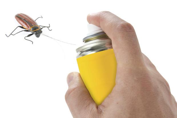 شركة مكافحة الحشرات في الفجيرة_شركة بخ صراصير فى الفجيرة