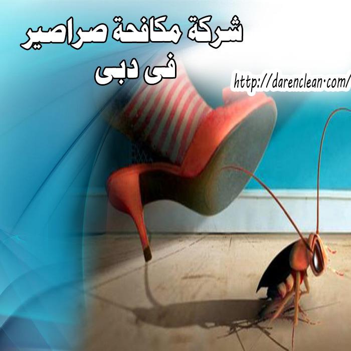 شركة مكافحة الصراصير في دبي_مكافحة حشرات فى دبى
