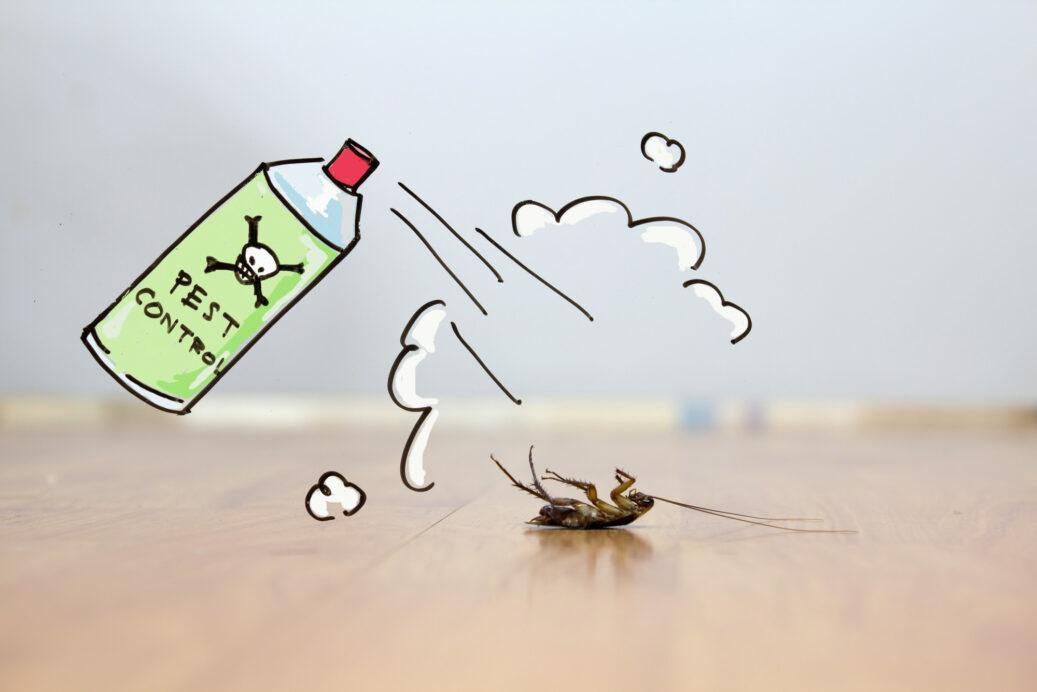 شركة بخ صراصير في دبي _شركات مكافحة الحشرات بدبى